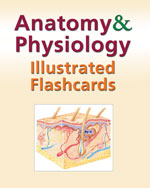 Anatomy and Physiolo…,9781428376571