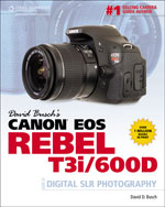 David Busch's Canon …,9781435460287