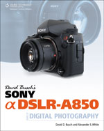 David Busch's Sony A…,9781435457553