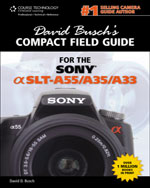 David Busch's Compac…