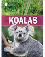 Koalas 5-Pack (US): …,9781424037339