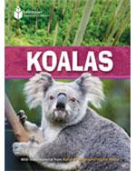Koalas 5-Pack (US): …, 9781424037339