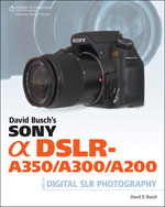 David Busch's Sony A…,9781598638011