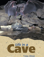 Life in a Cave (5-pa…,9781424097081