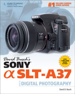 David Busch's Sony S…,9781285185583