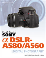 David Busch's Sony A…,9781435459465