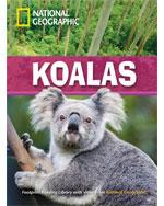 Koalas  + Book with …, 9781424045976