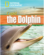 Cupid the Dolphin + …,9781424022878