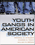 Youth Gangs in Ameri…,9780534615697